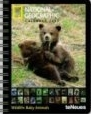 "Calendrier 2009 ""National Geographic"" Wildlife Baby Animals Deluxe Diary"